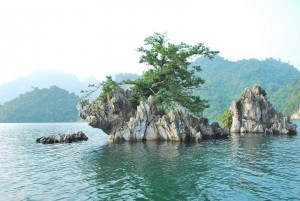 Photo by http://dulichvietravel.com/du-lich-thung-nai-5-10.htm