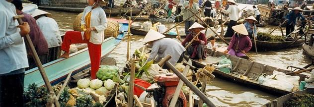 Photo by http://en.wikipedia.org/wiki/Mekong_Delta