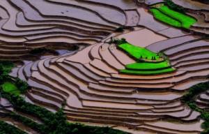 Image by http://www.amazingplacesonearth.com/mu-cang-chai-vietnam/