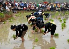 Image by http://www.waytosapa.com/attraction/detail/Festival_in_Sapa_Long_Tong_Festival_73.html
