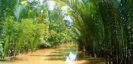 Image by: http://canthotourist.vn/travel/mekong-delta/waterway-transport