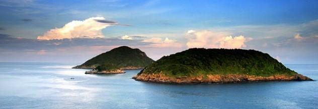 Image by: http://condaovietnam.net/
