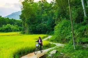 Image by: https://www.vietnamvisits.com/heaven-comes-to-earth-in-loc-yen/